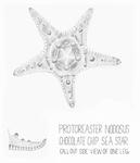 Protoreaster nodosus by Vaishnavi Vanamala '19