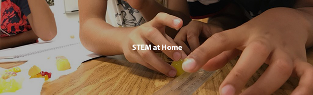 STEM at Home