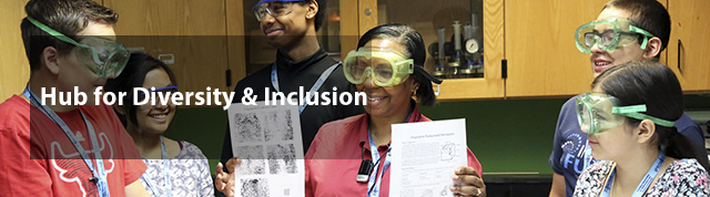 Hub for Diversity and Inclusion