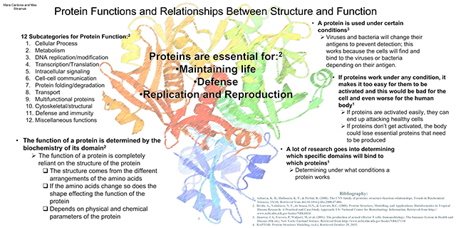 Protein Folding Structure Prediction Posters Examples Of Student
