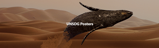 UNSDG Posters