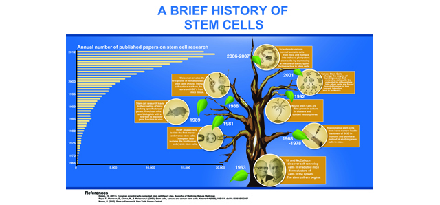 Stem Cell Posters