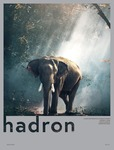 Hadron by Devika Prasad '19 and Caitlyn Castillo '20