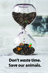 Don't Waste Time Save Our Animals by Illinois Mathematics and Science Academy